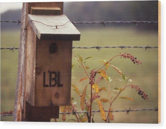 Birdhouse - 1 Wood Print by Randy Muir