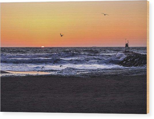 Birds At Sunrise Wood Print