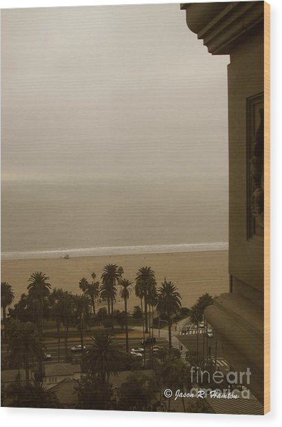 Birds Eye In Santa Monica Wood Print by Jason R Hampton