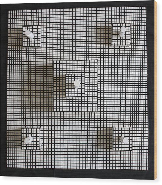 Bird's Eye View Wood Print by Frank Parrish
