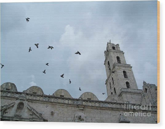 Birds Flying Above The Basilica And The Monastery Of Saint Francis Of Assisi Wood Print by Sami Sarkis