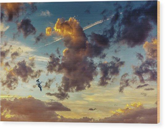 Birds In Flight At Sunset Wood Print