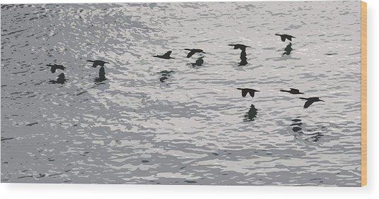 Birds In Flight. Wood Print by Robert Rodda