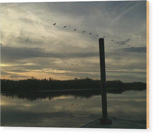 Birds In Line Wood Print