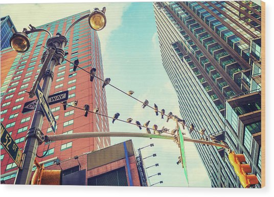 Birds In New York City Wood Print
