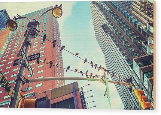 Birds In New York City Wood Print
