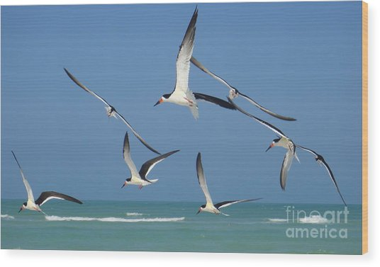 Birds In Paradise Wood Print by Jan Daniels