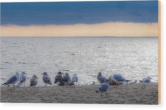 Birds On A Beach Wood Print