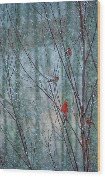 Birds On A Snowy Day Wood Print