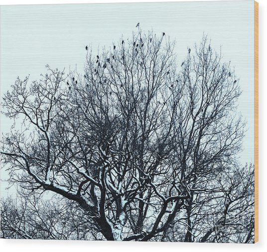 Birds On The Tree Monochrome Wood Print