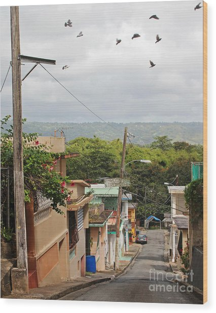 Birds Over Yabucoa Wood Print