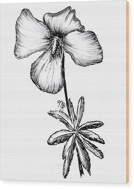 Birdsfoot Violet Wood Print