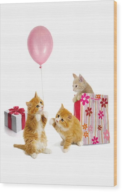 Birthday Kitties Wood Print