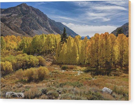 Bishop Creek Aspen Wood Print
