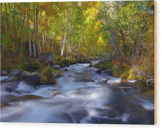 Bishop Creek In Fall Eastern Sierra Photograph Wood Print