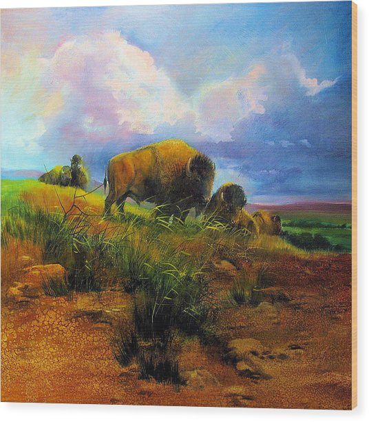 Bison Bluff Wood Print by Robert Carver