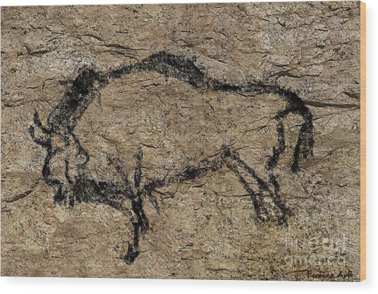 Bison From Niaux Cave Wood Print