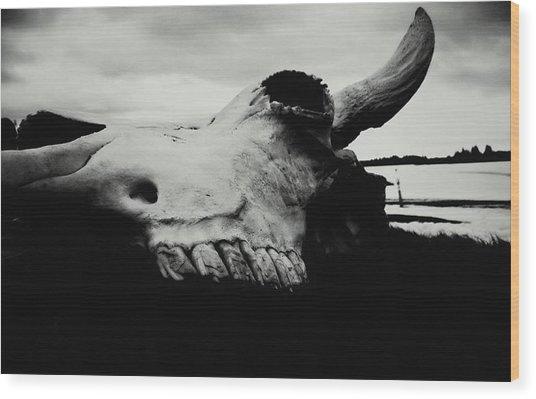 Bison Skull Black White Wood Print