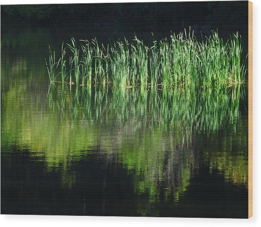Black And Green Wood Print