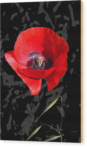 Black And Red Poppy Wood Print by Martine Affre Eisenlohr