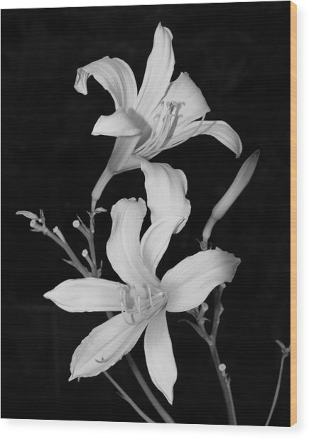 Black And White 001 Wood Print by William Bray