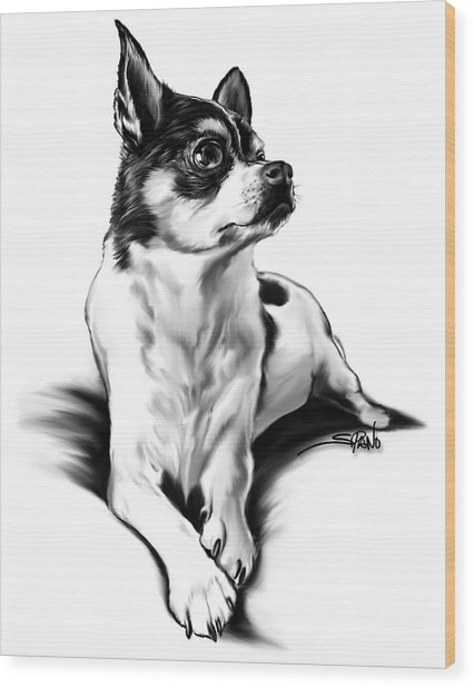 Black And White Chihuahua By Spano Wood Print