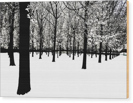 Wood Print featuring the photograph Black And White by Jim Dollar