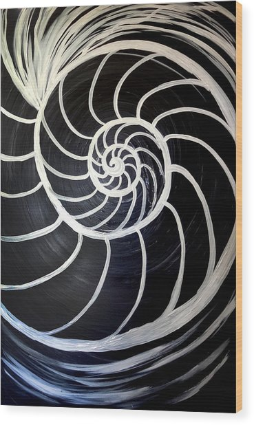Black And White Nautilus Spiral Wood Print