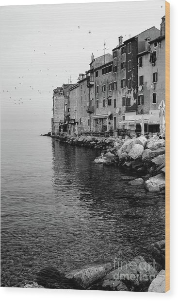 Black And White - Rovinj Venetian Buildings And Adriatic Sea, Istria, Croatia Wood Print