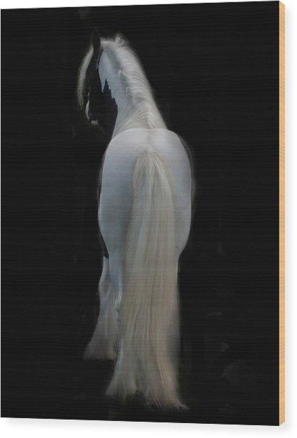 Black And White Study II Wood Print