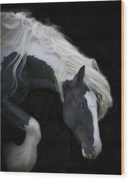 Black And White Study V Wood Print