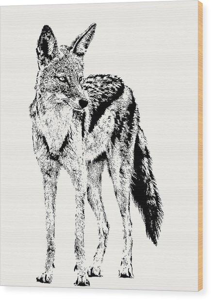 Black-backed Jackal Full Figure Wood Print