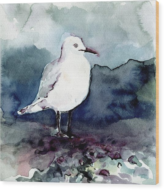 Black-billed Gull Wood Print