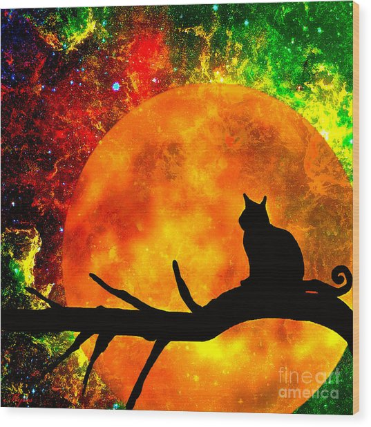 Black Cat Harvest Moon Wood Print