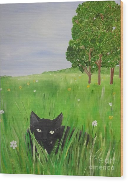 Black Cat In A Meadow Wood Print