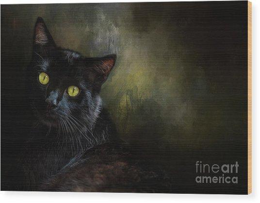 Black Cat Portrait Wood Print