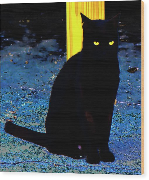 Black Cat Yellow Eyes Wood Print