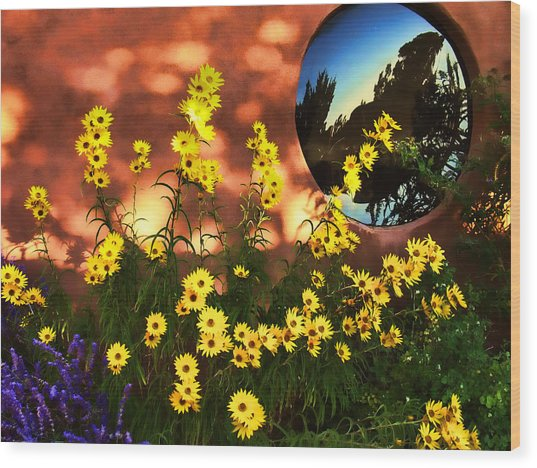 Black-eyed Susans And Adobe Wood Print