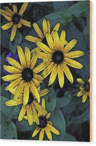 Black-eyed Susans Wood Print by Debra Wilkinson