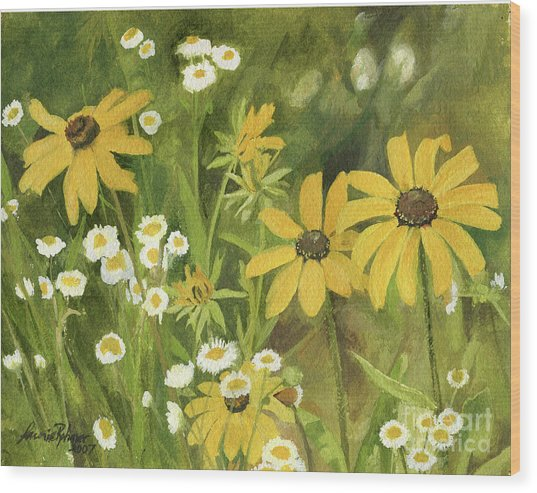 Black-eyed Susans In A Field Wood Print