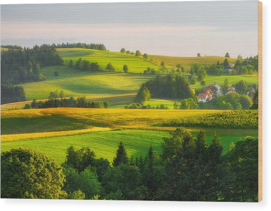 Black Forest Landscape Wood Print
