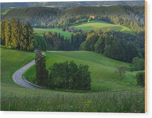 Black Forest Morning Wood Print