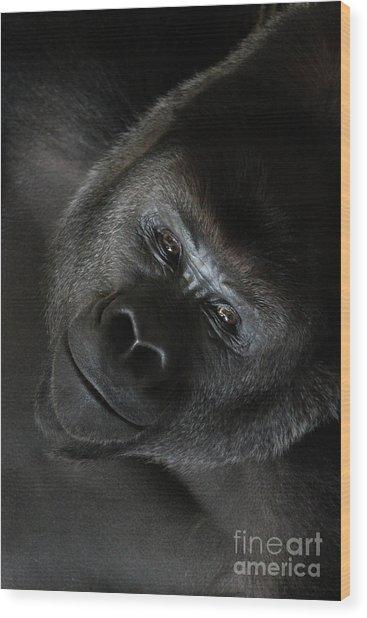 Black Gorilla Smile Wood Print