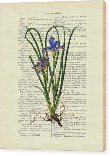 Black Iris Antique Illustration On Dictionary Page Wood Print