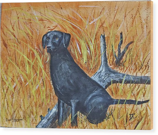 Black Lab-2 Wood Print