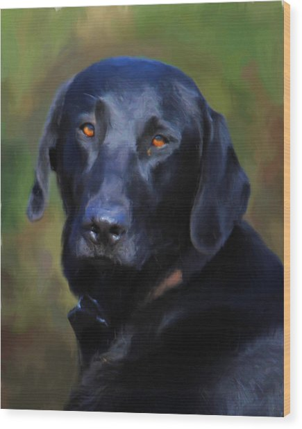 Black Lab Portrait Wood Print
