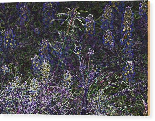 Black Light Wildflowers Wood Print by Linda Phelps