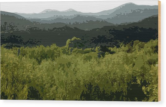 Black Mountains Wood Print by John Scariano