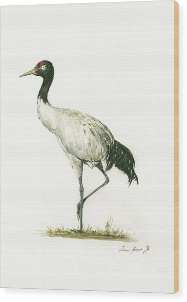 Black Necked Crane Wood Print