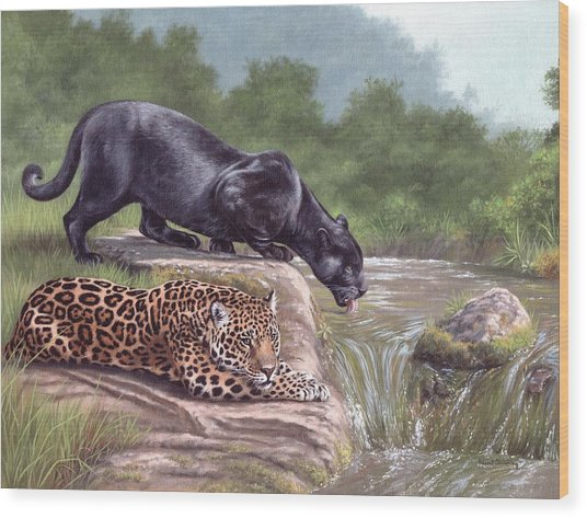 Black Panther And Jaguar Wood Print
